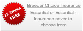 breeder choice insurance